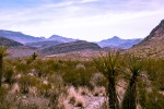 Big Bend National Pard